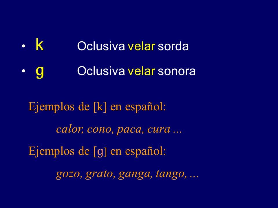 k Oclusiva velar sorda ɡ Oclusiva velar sonora. Ejemplos de [k] en español: calor, cono, paca, cura ...